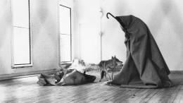 Beuys und die Schamanen