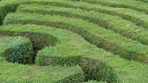 Im Labyrinth der Möglichkeiten