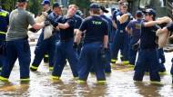 Anpacken in der Krise: Helfer des Technischen Hilfswerks bei Elbe-Hochwasser 2013