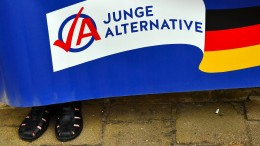 Auch AfD Berlin unter Beobachtung