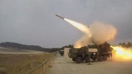 Training für den Ernstfall in Südkorea