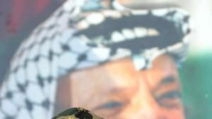 Arafat verbarrikadiert sich