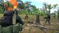FARC will Drogenanbau beenden