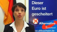 Petry verzichtet auf AfD-Spitzenkandidatur