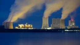 Kohlekraftwerke größter Strom-Einzelposten