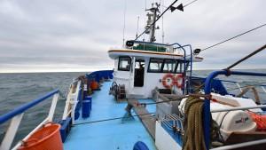 Ohne Abkommen muss Macron den Zorn der Fischer fürchten