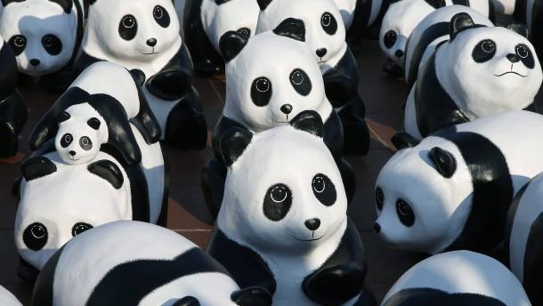 Hat der WWF brutale Wildhüter unterstützt?