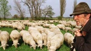 USA verbieten EU-Fleischimporte