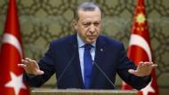 Verfassungsentwurf: So soll Erdogan mehr Macht bekommen