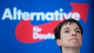 Die AfD-Vorsitzende Frauke Petry