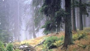 Naturschutz soll aus dem Reservat geholt werden