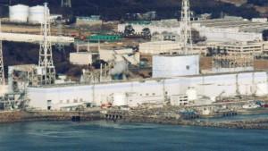 Plutonium im Boden bei Fukushima gefunden