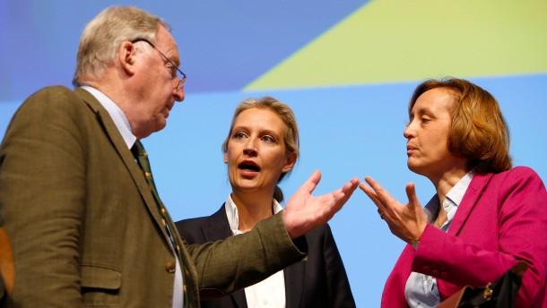 """Gauland kritisiert EU-Beschlüsse als """"Luftnummer"""""""