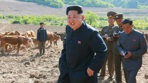 Nordkorea droht Hungersnot
