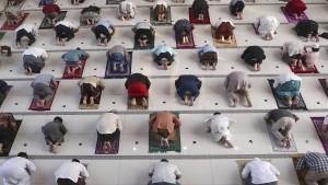 Stimme der moderaten Muslime