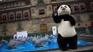 Bekannter Pandabär: WWF-Aktion zum Schutz des Kalifornischen Schweinswals in Mexiko-Stadt
