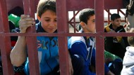 Sie sind dem IS entkommen: Irakische Jungen aus der Ortschaft Gogdschali, im Osten Mossuls.