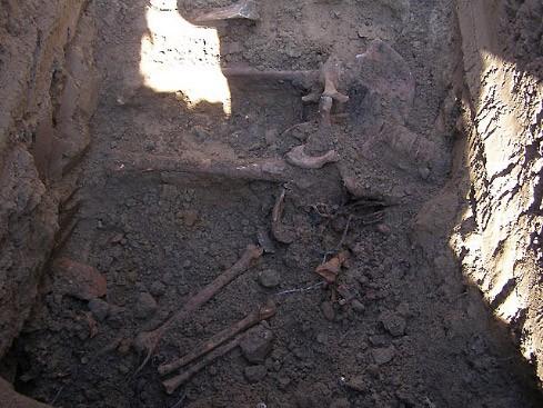 """""""Wir haben Skelette gefunden, Draht, Gebissteile und ein paar Soldatenstiefel."""""""