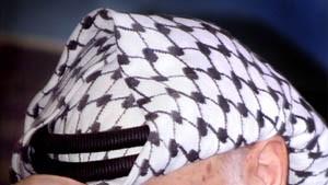 Arafat: Zu Waffenstillstand bereit
