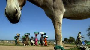 Sudan akzeptiert die UN-Resolution