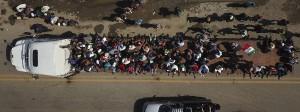 Migranten aus Mittelamerika klettern am 29. Oktober auf den Anhänger eines Lastwagens, während eine Karawane von Menschen ihren langsamen Marsch zur amerikanischen Grenze fortsetzt.