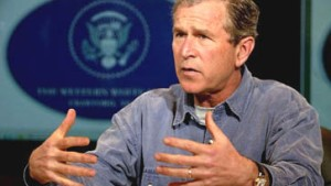 Mischt Bush sich ein?