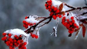 Der Winter kündigt sich an