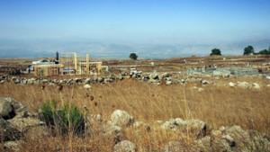 Keinerlei Absicht, auf den Golan verzichten