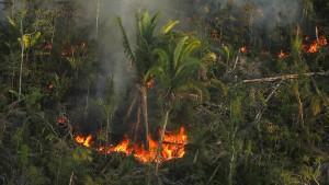 """Brasiliens Außenminister sieht """"Umwelthysterie"""" im Westen"""