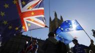 Brexit-Gegner hier im Oktober vor dem Parlament.