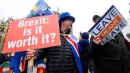 Was ist eigentlich los?: Demonstranten am Montag vor dem britischen Parlament