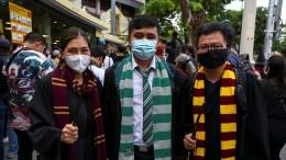 Als Harry Potter gegen den Monarchen