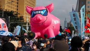 Tausende gegen Import von amerikanischem Schweinefleisch