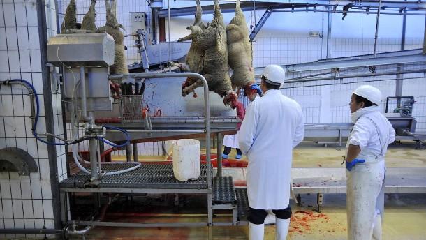 Tierschutz vor Religionsfreiheit? Das ist Sache der Staaten