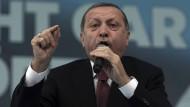 Erdogan soll per Dekret regieren können