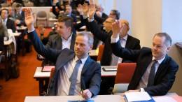 AfD-Fraktion in Schweriner Landtag spaltet sich