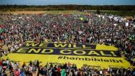 Gegen Kohleabbau: Zehntausende protestieren gegen die Rodung des Hambacher Forsts