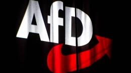 AfD klagt gegen Verfassungsschutz