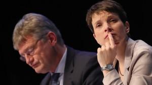 AfD fordert OSZE-Beobachter
