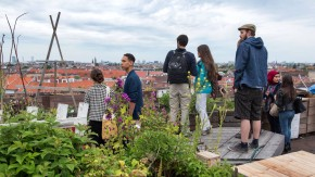 Gärtnern im Wandel - Auf dem Dach des Einkaufszentrums Neukölln Arkaden wird der Klunkerkranich betrieben. Gärtnerei, Perforemancekunst und Barbetrieb in einem. Auf dem ehemaligen Tempelhofer Flugfeld bauen Hobbygärtner sogar Gemüse an.