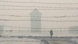 Graumann warnt vor neuem Antisemitismus