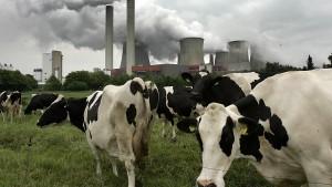 Deutscher Treibhausgas-Ausstoß steigt weiter