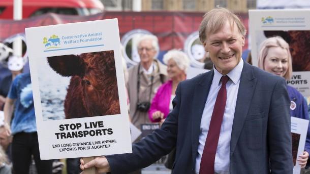 Tory-Abgeordneter David Amess stirbt nach Messerattacke