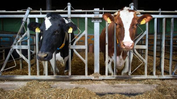 Belastete Milch in Nordrhein-Westfalen entdeckt