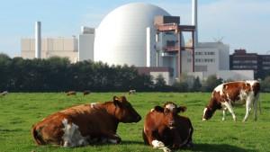 Letzte Hoffnung Atomkraft