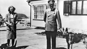 Bis Hitler sich verabschiedet