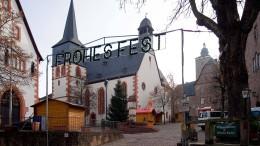 Fuchsjagd im Vogelsberg