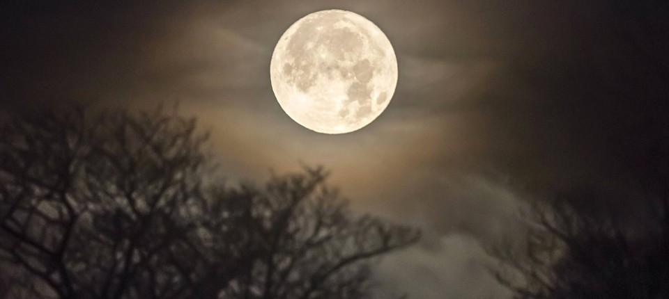 Donald Trump Will Mond Besiedeln Und Mars Erobern