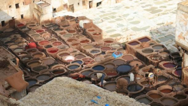 Der Hammel auf dem Dach