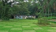 """Der Landschaftskünstler Burle Marx sollte für die zweite Ehefrau des Unternehmers Francisco """"Baby"""" Pignatari diesen Schachbrettgarten entwerfen."""